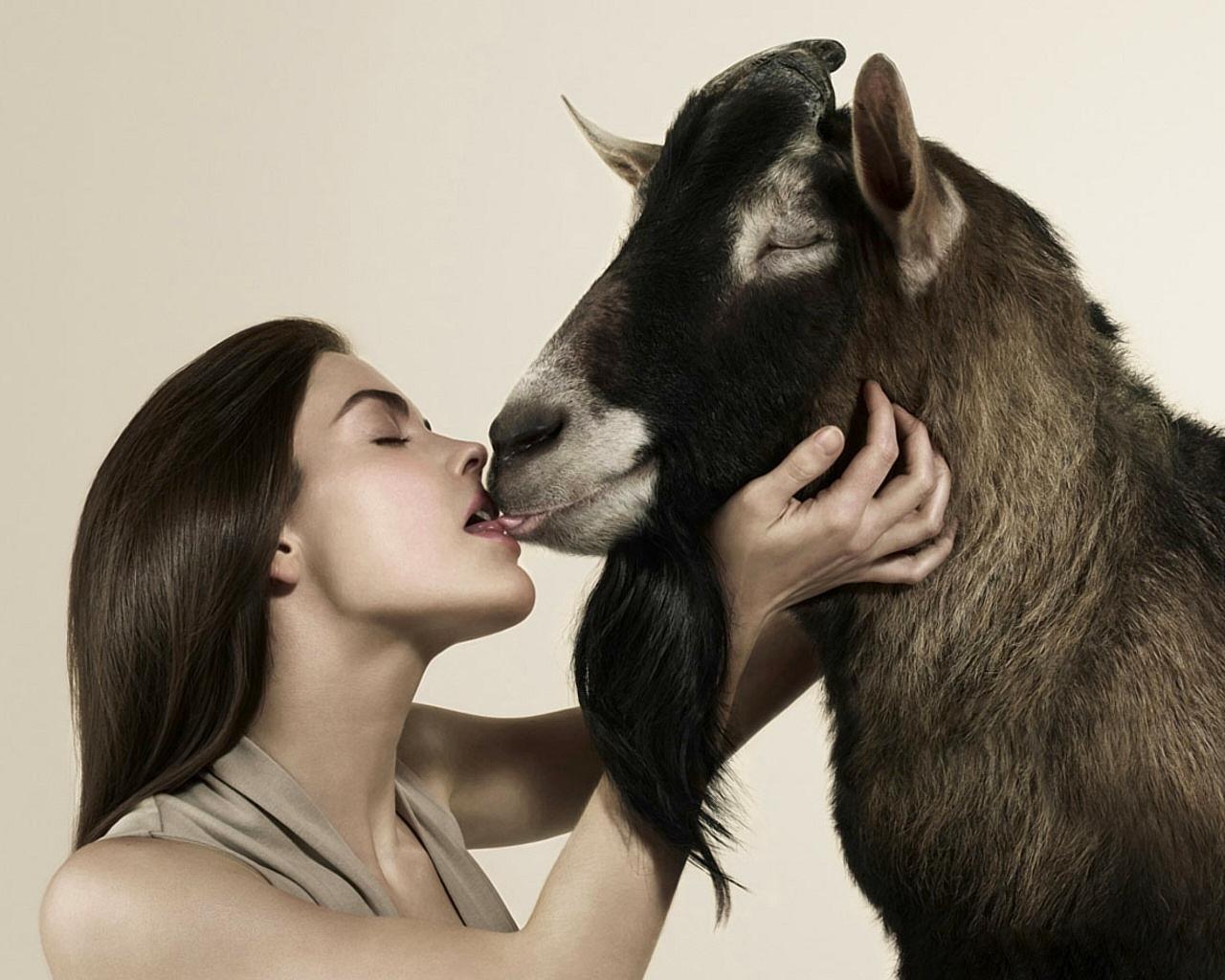 Секс женщины с овцой 3 фотография