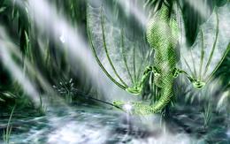 Emerald wallpaper dragon tongue caught a drop of dragons
