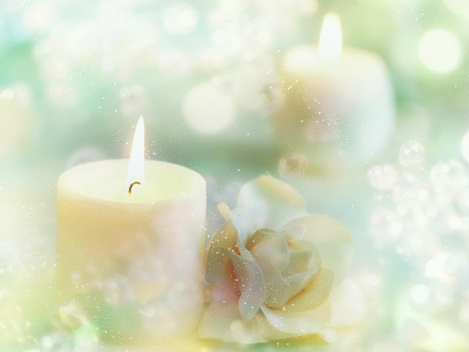 Обои нежные свечи и цветы новый год