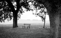 Wallpaper Lonely bench on the edge of the forest 1920x1200