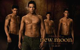 Wallpaper The twilight saga new moon movie