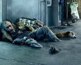 Homeless man wallpaper and wandering dog osfaltom merged with and became part of the urban landscape sad