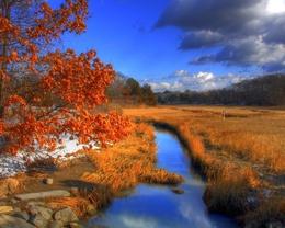 wallpaper Creek flows through the field of water